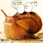 Snail Journey