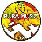 Nulogic Meets Pura Music