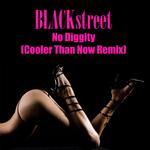 No Diggity (Cooler Than Now remix)