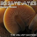 The Velvet Motion