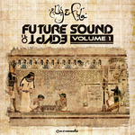 Future Sound Of Egypt: Volume 1