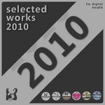 VARIOUS - Selected Works 2010 (Front Cover)