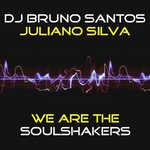 We Are The Soul Shakers