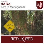 Lost In Madagascar
