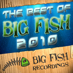 The Best Of Big Fish 2010 (unmixed tracks)