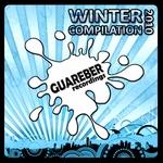 Guareber Recordings: Winter 2010 Compilation (unmixed tracks & continuous DJ mixes))