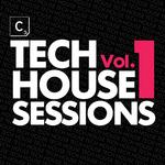 Tech House Sessions Vol 1 (unmixed tracks & continous DJ mixes)