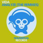 Analyze (The remixes)