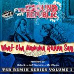 Wha Cha Mamma Gunna Say (remixes)
