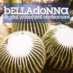 Digital Unnatural Environment
