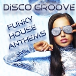 Disco Groove: Funky House Anthems (mixed by Love Assassins)
