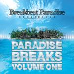 Paradise Breaks Volume One (FREE DJ mix)