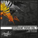 Divergent Paths Vol 1