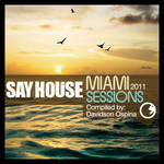 Say House Miami 2011