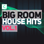 Big Room House Hits: Vol 1