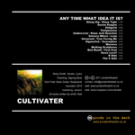 CULTIVATER - Any Time What Idea It Is? (Back Cover)
