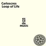 Loop Of Life