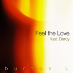 Feel The Love (The remixes)