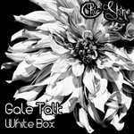 GALE TALK - White Box (Front Cover)