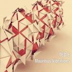Mauritius Vibrations