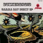 Gamma Ray Burst EP
