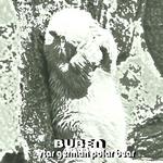 Star German Polar Bear