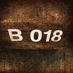 B018 Series Vol 1 (compiled & mixed by Gunther & Stamina) (unmixed tracks)