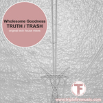 WHOLESOME GOODNESS - Truth (Front Cover)