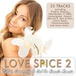 VARIOUS - Love Spice Vol 2 (Ballads Covers Pop & Soul For Romantic Moments) (Front Cover)