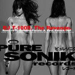DJ T 1000 - The Revenge EP (Front Cover)