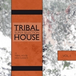 Tribal House: Super Selection Vol 1