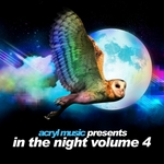 VARIOUS - In The Night Vol 4 (Front Cover)