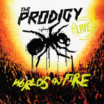 World' On Fire (Live)