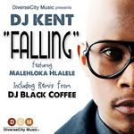 DJ KENT feat MALEHLOKA HLALELE - Falling (Front Cover)