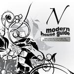 Modern House Guide N