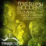 First To Say Goodbye (Rocco & Charles Webster Remixes)