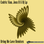 Bring Me Love (remixes)