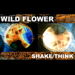 WILDFLOWER - Shake (Front Cover)