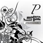 Modern House Guide