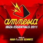 Amnesia Ibiza Essentials 2011 (unmixed tracks)