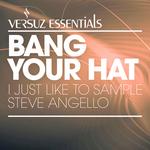 I Just Like To Sample Steve Angello