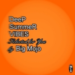 Deep Summer Vibes (Selected For You By Big Mojo)