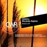 ESPINO, Ricardo/DJ ARK/DAVIS GRUSS - Bolarvo EP (Front Cover)