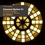 WOLLION/VARIOUS - Four:Twenty Presents Connect Series 01 (unmixed & mixed by Wollion) (Front Cover)