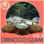 VARIOUS - Orinoco Glam (Front Cover)