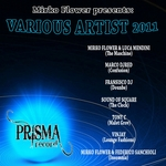 VARIOUS - Mirko Flower Presents Various Artist 2011 (Front Cover)