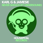 KARL G & JAMESIE feat UNDERSOUND - Never Should (Front Cover)