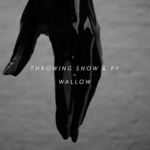 THROWING SNOW & PY - Wallow (Front Cover)