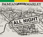 DAMIAN MARLEY - All Night (Front Cover)