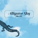 OWL CITY - Alligator Sky (Front Cover)